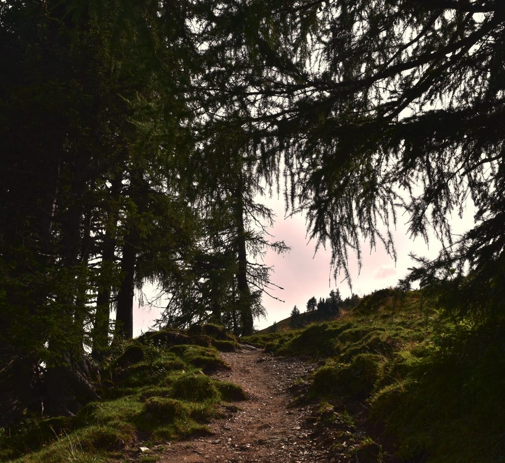 hiking in the Austrian Alps #austrianvibes #austria #digitalnomadlife #alps #hiking #autumn